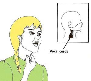 vocal_cords_location